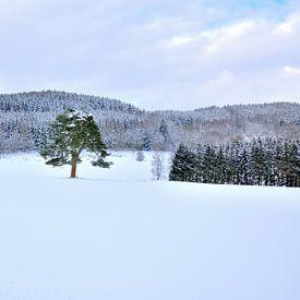 Winter van Ger Nielen