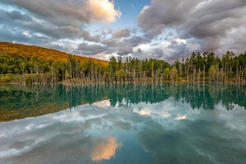 De Blue Pond Hokkaido, Japan van Original Mostert Photography