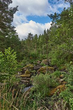 Zweeds landschap 180 van Geertjan Plooijer