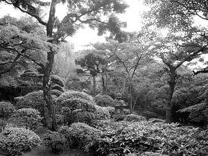 Japanse Zen tuin