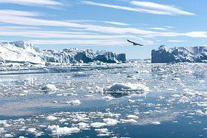 IJsbergen in Groenland van Eddie Smit