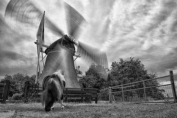 De slowmotion molen von Remco de Vries