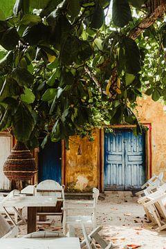 Unter dem Mandelbaum | Trancoso von Vandaag is nu