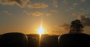 Zonsondergang over de Ginkel van Richard de Nooij