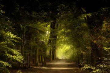Shine A Little Love sur Kees van Dongen