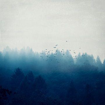 Misty Blue Forest von Dirk Wüstenhagen