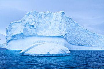 ijsschots met Witte aalscholvers van Eric de Haan