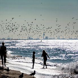Het strand van Ton de Koning