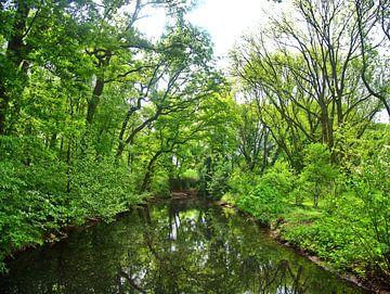 L'eau verte sur Edgar Schermaul