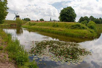 Waterlelies in gracht met molen. van Jim van Iterson