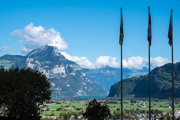 Blick auf verschneiten Berg mit Fahnen im Vordergrund von Idema Media