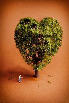 Valentijn van