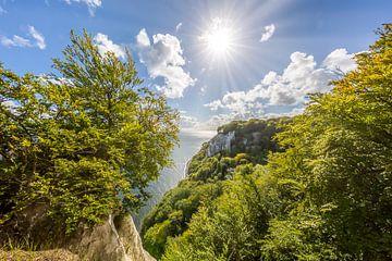 RÜGEN Nationalpark Jasmund, Aussicht Königsstuhl von Melanie Viola