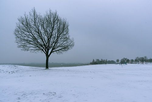 strand van Zeewolde in wintertijd.