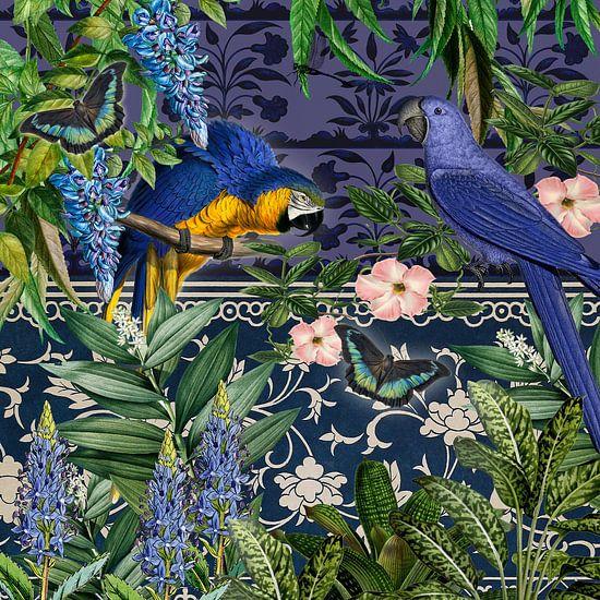 Blauw uur met blauwe papegaaien