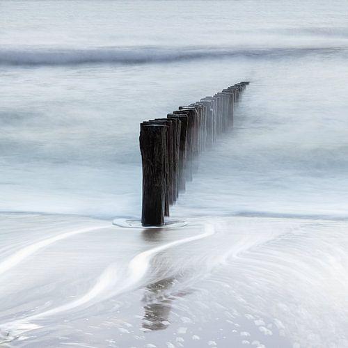 Terre salée - Poleheads sur Ingrid Van Damme fotografie