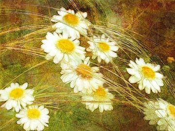 Grassen en madeliefjes van Claudia Gründler
