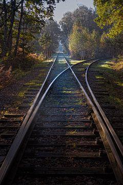 Alte Militär-Eisenbahn in Brasschaat von Inez VAN DE WEYER