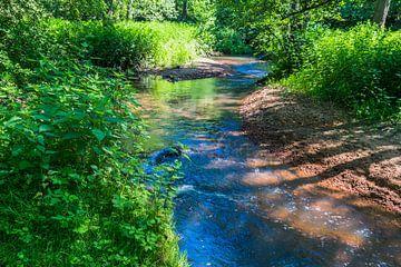Fluß in Nationalpark Maasduinen von Jaap Mulder
