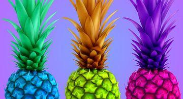 Ananas, kleurrijke