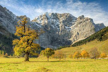 Großer Ahornboden in Österreich im Herbst von Michael Valjak