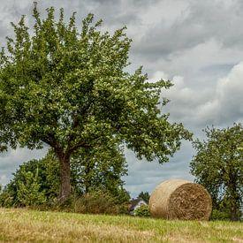 Hooibalen in Zuid-Limburg van John Kreukniet