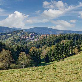 Urlaubsort Sankt Andreasberg im Harz von Peter Eckert