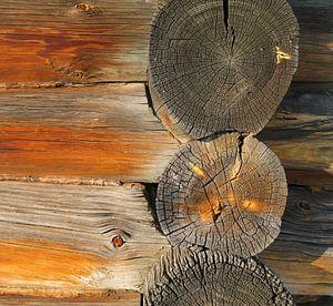 Holztextur von