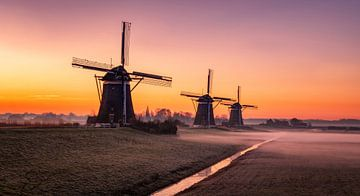Windmills sur Reinier Snijders