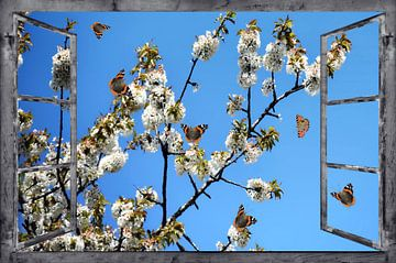 Window view - Spring Awakening van Christine Nöhmeier