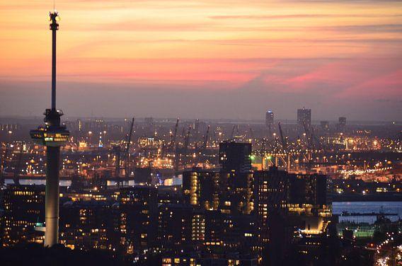 Euromast de Maas de Haven van Rotterdam en de Noordzee en Zeeland op de Horizon van Marcel van Duinen