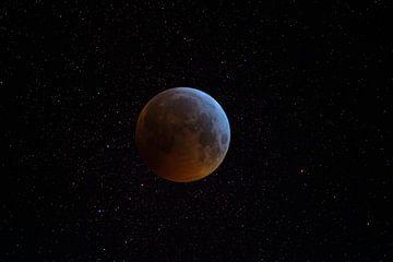 maan van