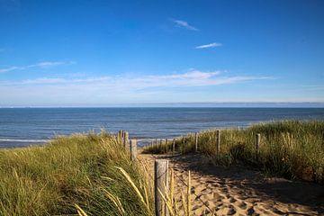 Der Strand von Arie  van Duijn