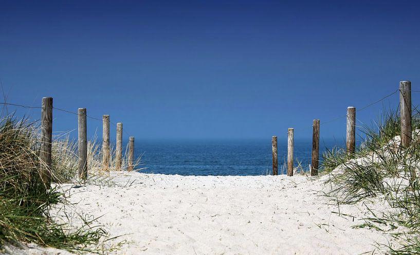 Traversée des plages sur Frank Herrmann