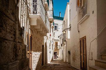 Dorp in Puglia van Leonard Walpot
