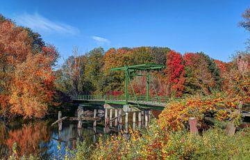 Kroonbrug in de Herfst , Biesbosch , Werkendam von Rens Marskamp
