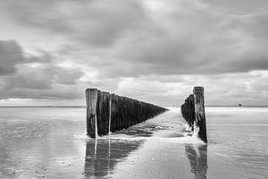 Brekers Nederlandse kust van Desirée Couwenberg