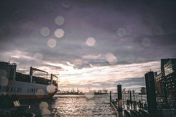 Containerschip verlaat de haven van Hamburg van Fabian Bracht