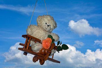 Teddybeer op een grote reis van Claudia Evans