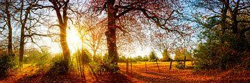 Herbstlandschaft von Günter Albers