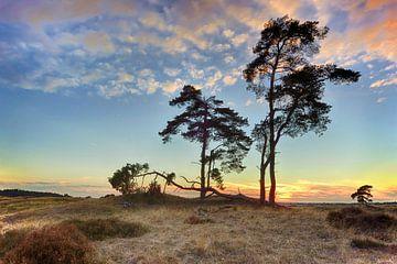 Zonsondergang Nationaal park de hoge Veluwe van John Leeninga