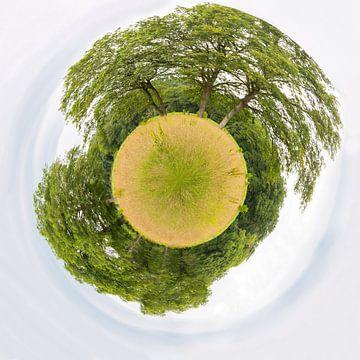 Bomen en gras als kleine zwevende aarde planeet van