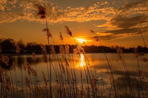 Zonsondergang aan het water.