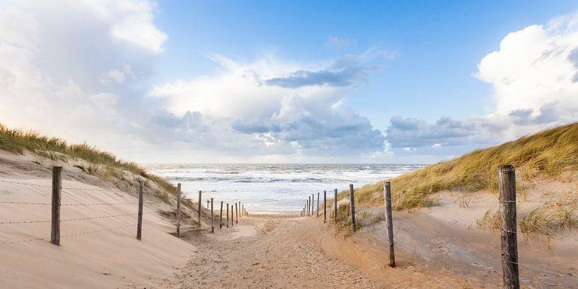 strand en duinen van Arjan van Duijvenboden