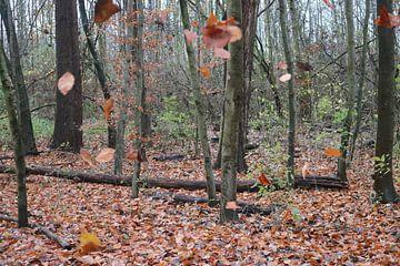 Vallende bladeren van Rosalie Broerze