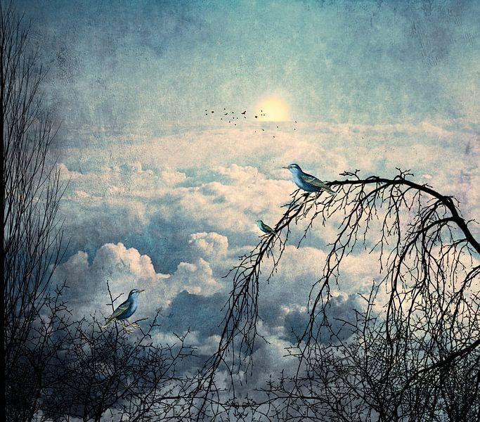 HEAVENLY BIRD I van Pia Schneider