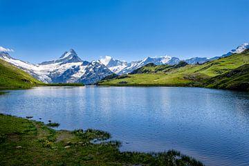 Bachalpsee und schneebedeckte Gipfel im Hintergrund von Steven Van Aerschot
