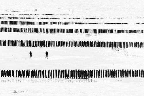 Zouteland zwart/wit