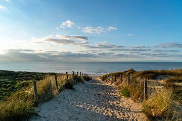 Strand van Noordwijk van Jeanette van Starkenburg