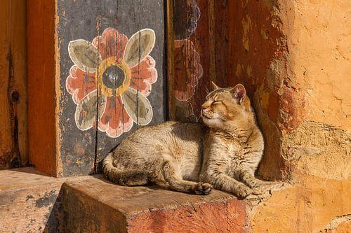 Tempel-Katze mit Wand-Blume von Erwin Blekkenhorst